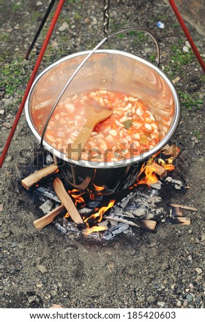 Cooking stew in nature - stock photo