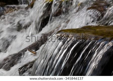 Cool mountain stream - stock photo