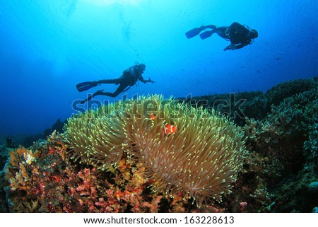 Coral, Anemone, Clownfish and Scuba Divers underwater - stock photo
