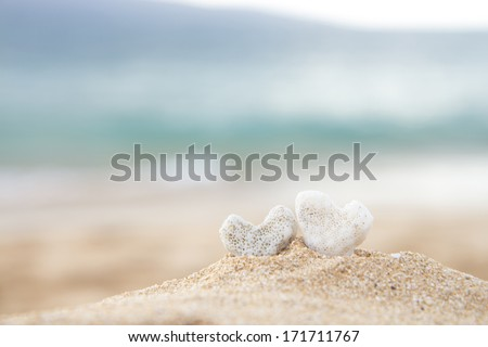 Coral hearts with the ocean and Kahoolawe Island in the background - stock photo