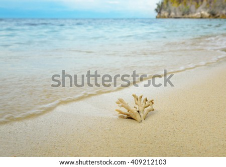 Coral on the sand at beach. Togean Islands or Togian Islands in the Gulf of Tomini. Central Sulawesi. Indonesia - stock photo