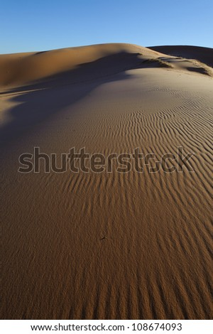 Coral Pink Sand Dunes in southern Utah. - stock photo