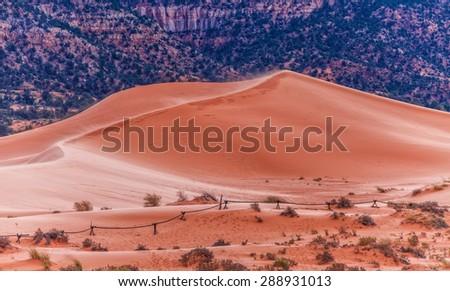 Coral Pink Sand Dunes State Park near Kanab, Utah, USA - stock photo