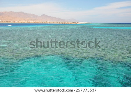 Coral reef and fluffy clouds landscape in the Red Sea, Africa - stock photo