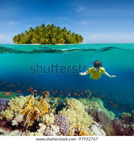 Corals, diver and palm island - half underwater shoot - stock photo