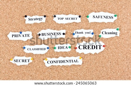 Cork board on which buttons are attached sheets of paper with business terms - stock photo