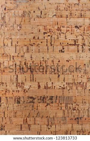 Cork-wood texture - stock photo