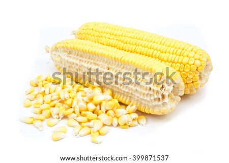 corn and  canned corn isolated on a white background - stock photo