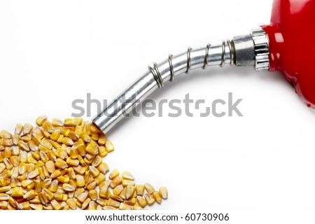 Corn comes out of nozzle from a gas pump, shot on white with soft shadows-space for copy - stock photo