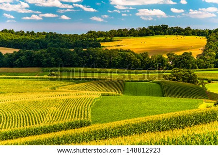 Corn fields and rolling hills in rural York County, Pennsylvania. - stock photo