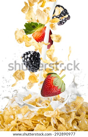 Corn Flakes With Strawberry and Blackberry Falling into A Bowl of Milk Splash - stock photo