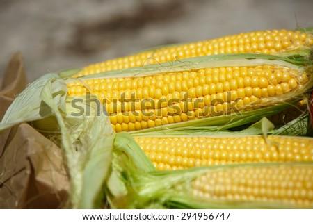 Corn fresh vegetables organic food, Grains of ripe corn summer harvest, corn cob between green leaves, bio corn, healthy eating and diet concept, selective focus, series - stock photo