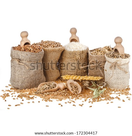 Corn kernel seed meal and grains in bags with wooden scoop isolated on a white background  - stock photo
