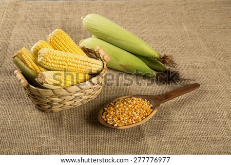 Corn maize and popcorns combined on a table. Brazilian Festa junina party. - stock photo