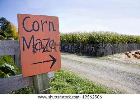 Corn maze sign next to a field of corn in rural america - stock photo