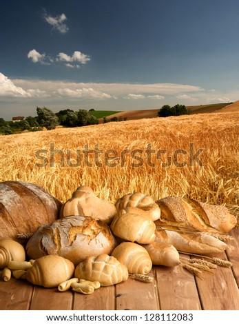 corn on the hills - stock photo