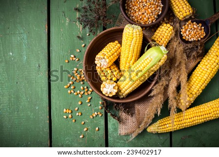 Corn on the plate on a green wooden boards - stock photo