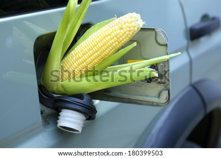 Corn sticking out of gas tank - stock photo