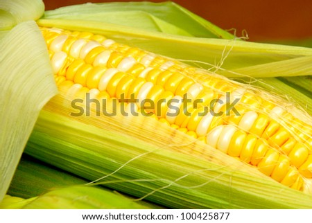 corn with leaves close-up - stock photo