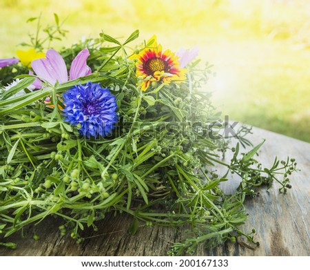 cornflower and summer herb - stock photo