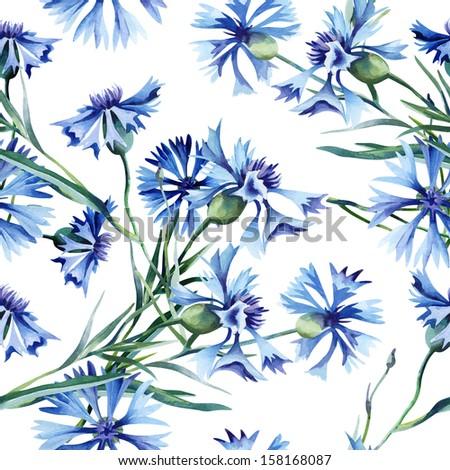 Cornflowers Seamless Pattern - stock photo
