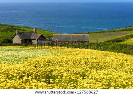 Cornwall - stock photo