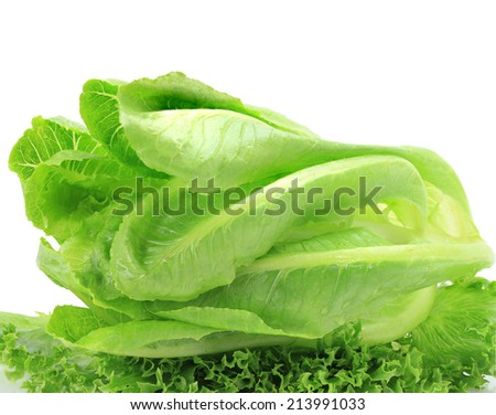 Cos lettuce isolated on white background. This has clipping path. - stock photo