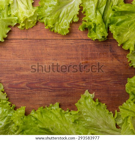 Cos lettuce isolated on wood board. - stock photo