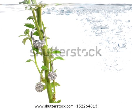 Costume jewelry on fresh green stem under water surrounded with bobbles - stock photo