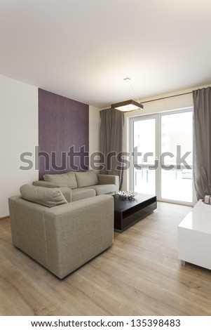 Cosy flat - grey sofa and armchair in living room - stock photo