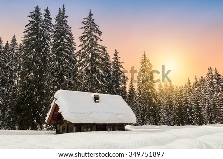 Cosy winter scene with snow-covered trees in the mountains in Slovenia - stock photo