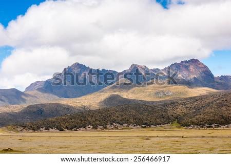 Cotopaxi National Park, Ecuador - stock photo