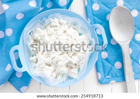 Cottage cheese - stock photo