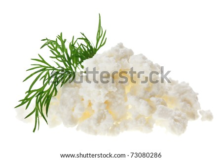 Cottage cheese (curd) heap with dill twig, isolated on white - stock photo