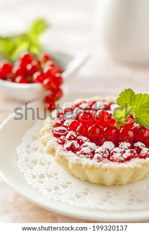 Cottage cheese tart with red currant and icing on the pink background. Low depth of focus. - stock photo