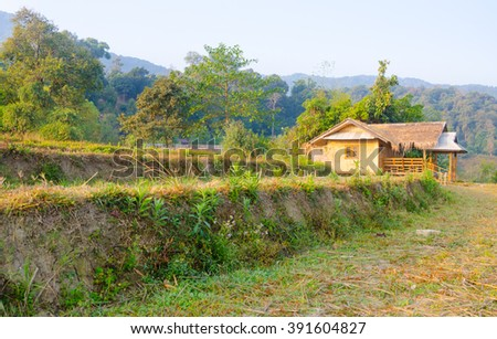 Cottage in countryside built up for Asian living in tropical forest. - stock photo