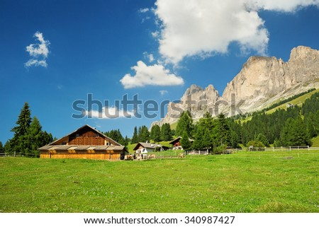 cottages in a green meadow in south tyrol   - stock photo