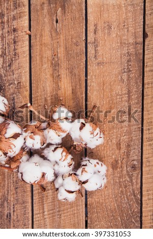 Cotton flowers on wooden background - stock photo
