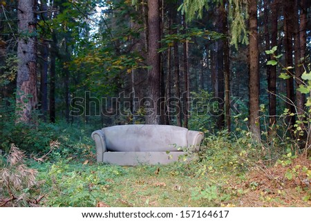 couch in the autumn forest - stock photo