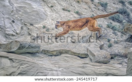 Cougar leaping in rocks - stock photo