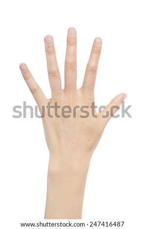 Counting woman hands five isolated on white background. - stock photo