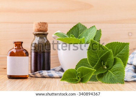 Country Borage,Indian Borage,Coleus amboinicus Lour with white mortar and essential extract oil on wooden background. - stock photo