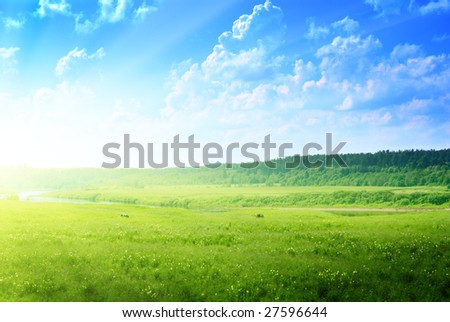 country landscape: river, cows and forest - stock photo