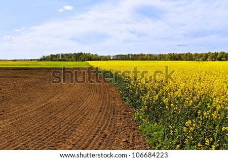 Country landscape with rape field and cultivated land. - stock photo