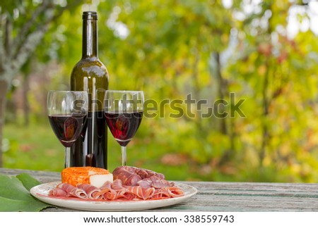 Country life setting with wine, fruits, cheese and meat. Outdoor - stock photo