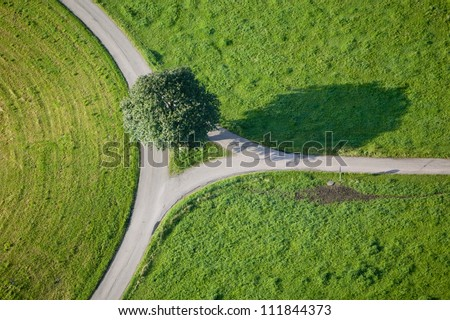 Country road and fields - stock photo