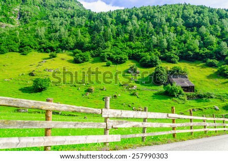 Country road and green alpine meadows in the background of the high peaks of the Alps, Zillertal, Austria - stock photo