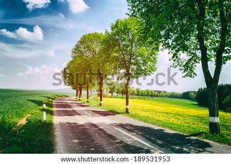 Country road at sunny summer day  - stock photo