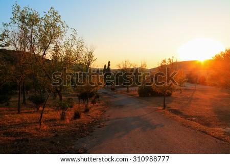 country road at sunset, Sardinia - stock photo