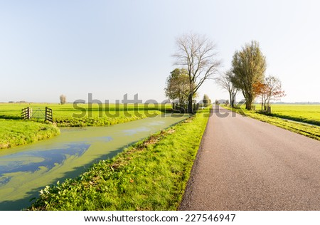 Country road in a Dutch polder landscape in early morning light in the fall season. - stock photo